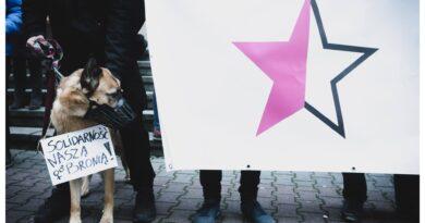 24 września Poznań – Rozprawa odwoławcza  oskarżonych za udział w Czarnym Proteście ( wyrok )